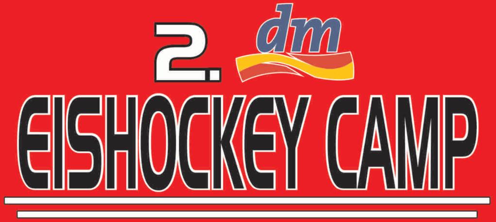 2. dm-Eishockeycamp bei den Ice Aliens